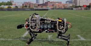 Robot gepárd