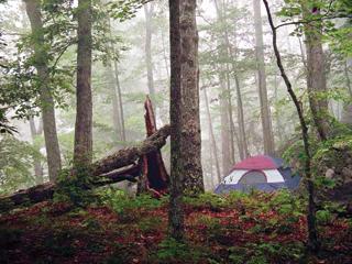 A sátornak ellen kell állni a csapadéknak, szélnek és még a szúnyoginváziónak is