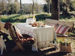 Asztalneműk