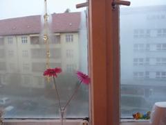 Párásodó ablakok