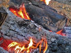 Amit a tűzifákról jó tudni