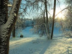 Téli fényhiány