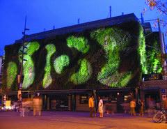 Zöld fal kívül-belül