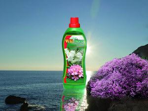 Mediterrán virágpompa teraszunkon