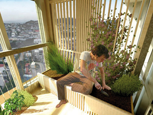 Növényszobák