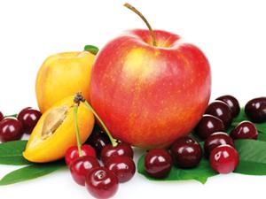 Kiskerti gyümölcsösök fajtaösszetétele