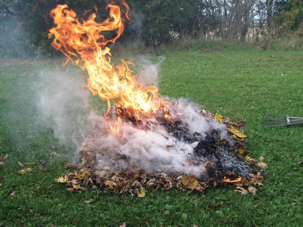A kertben is tilos az avarégetés