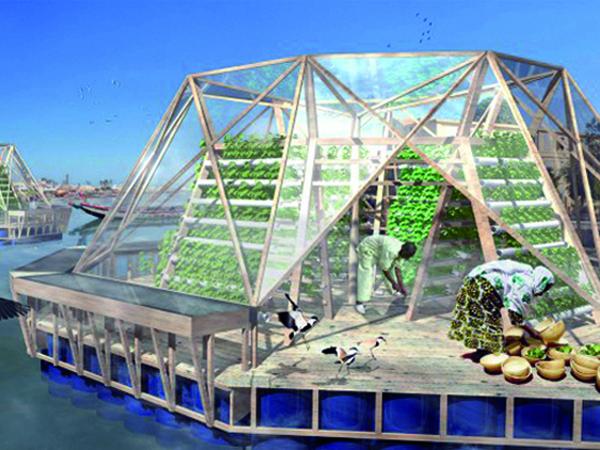 Hidrokultúrás növénytermesztő modul