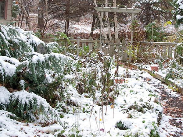 Téli felkészülés a kertben