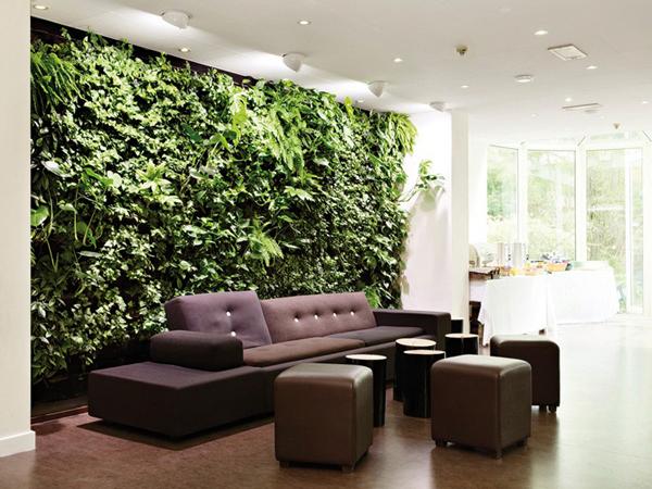 Növények a lakberendezésben