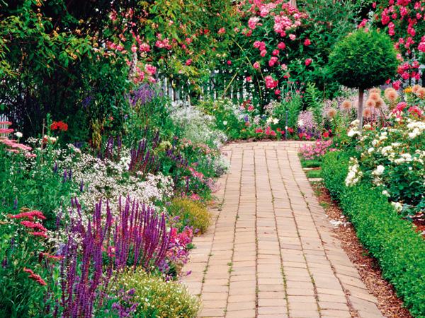 Nyár a kertben