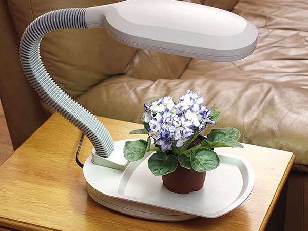 Növénylámpák alkalmazása