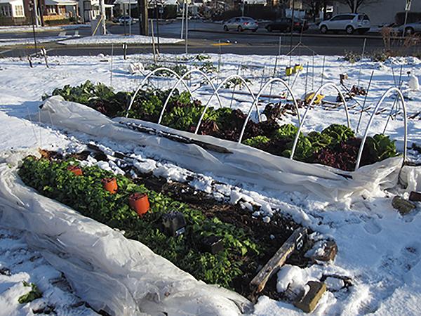 Tavaszodik már: kemény tél után