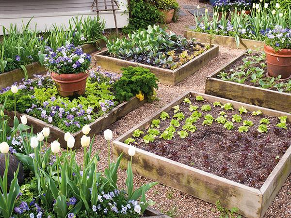 A talajművelés fontossága