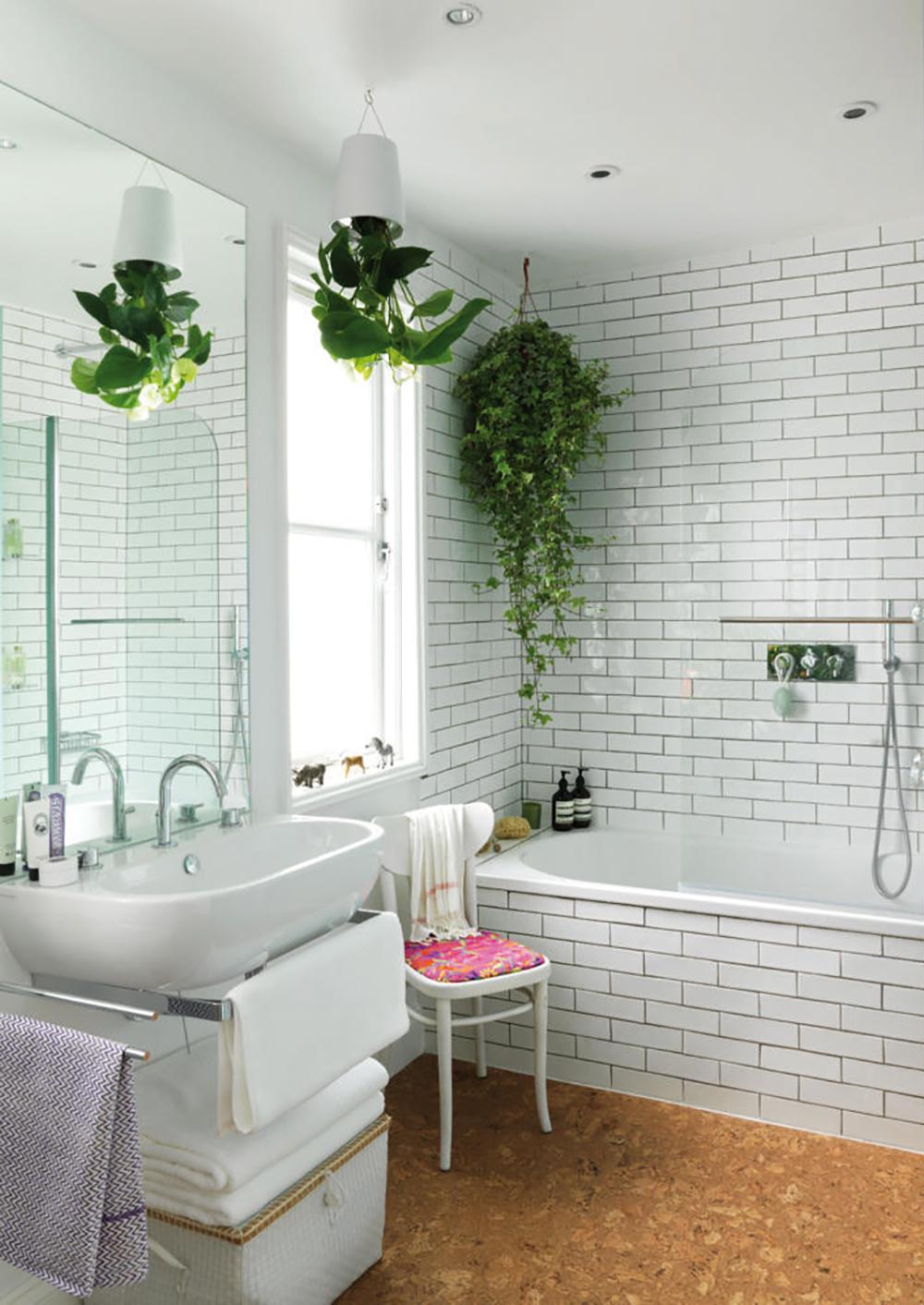 Növények a fürdőszobában - Ezermester 2017/6