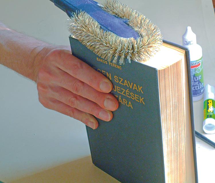 könyvek tisztítása a parazitáktól opisthorchiasis féreg kezelés