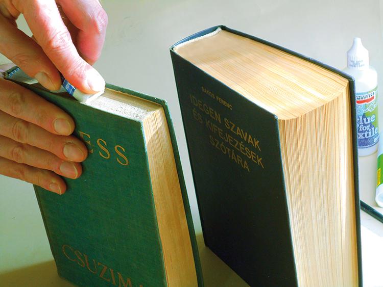 könyvek tisztítása a parazitáktól férgek hányás hőmérséklete