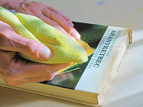 Megszabadulni a parazitáktól a nagy tisztítókönyv - Parazita tisztító könyv
