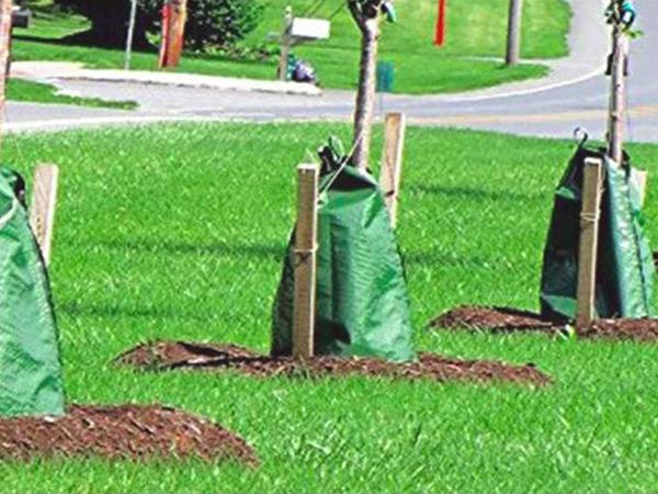 Praktikus kerti újdonságok