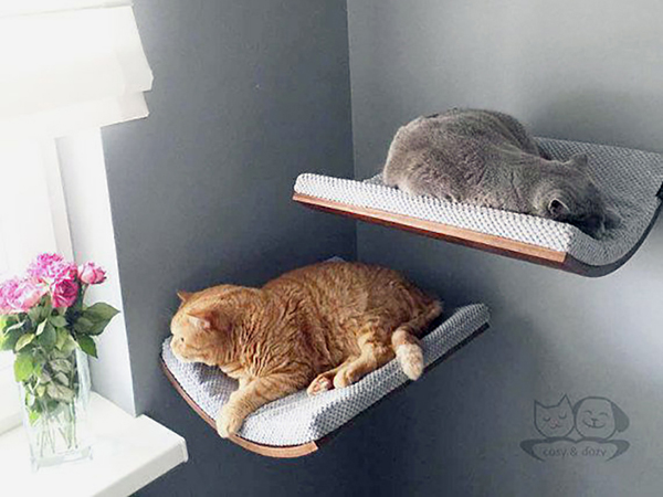 Kutya- és macskabútor