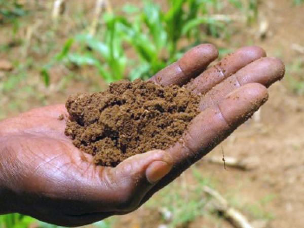 Tegyünk a talajleromlás ellen