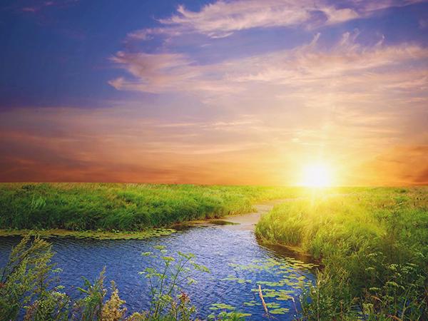 A fény az élet alapja