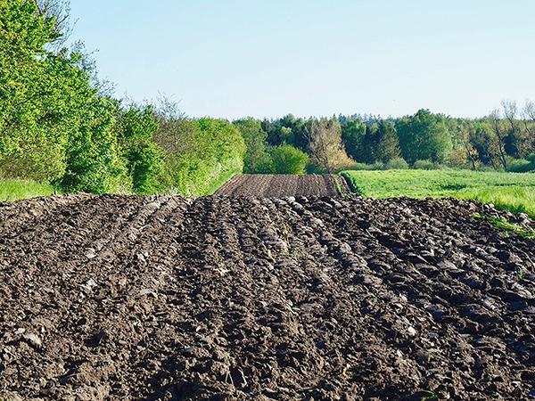 Klímabarát mezőgazdaság