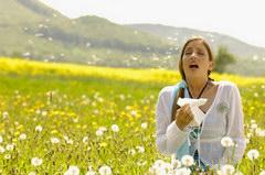 Növényválasztás allergiásoknak