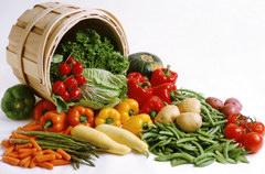 Kiskerti zöldségtermesztés (2. rész)