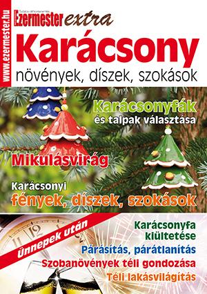Ezermester Extra 2016/4. Karácsony: növények, díszek, szokások